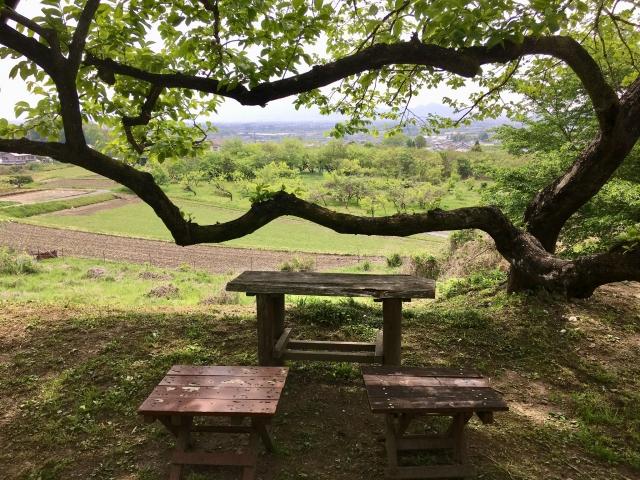 山野辺の道 カフェラキア 桜井