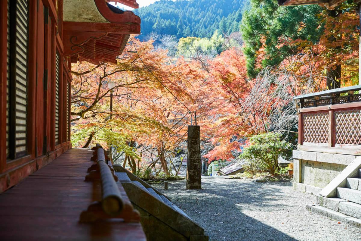 談山神社 紅葉 見ごろ