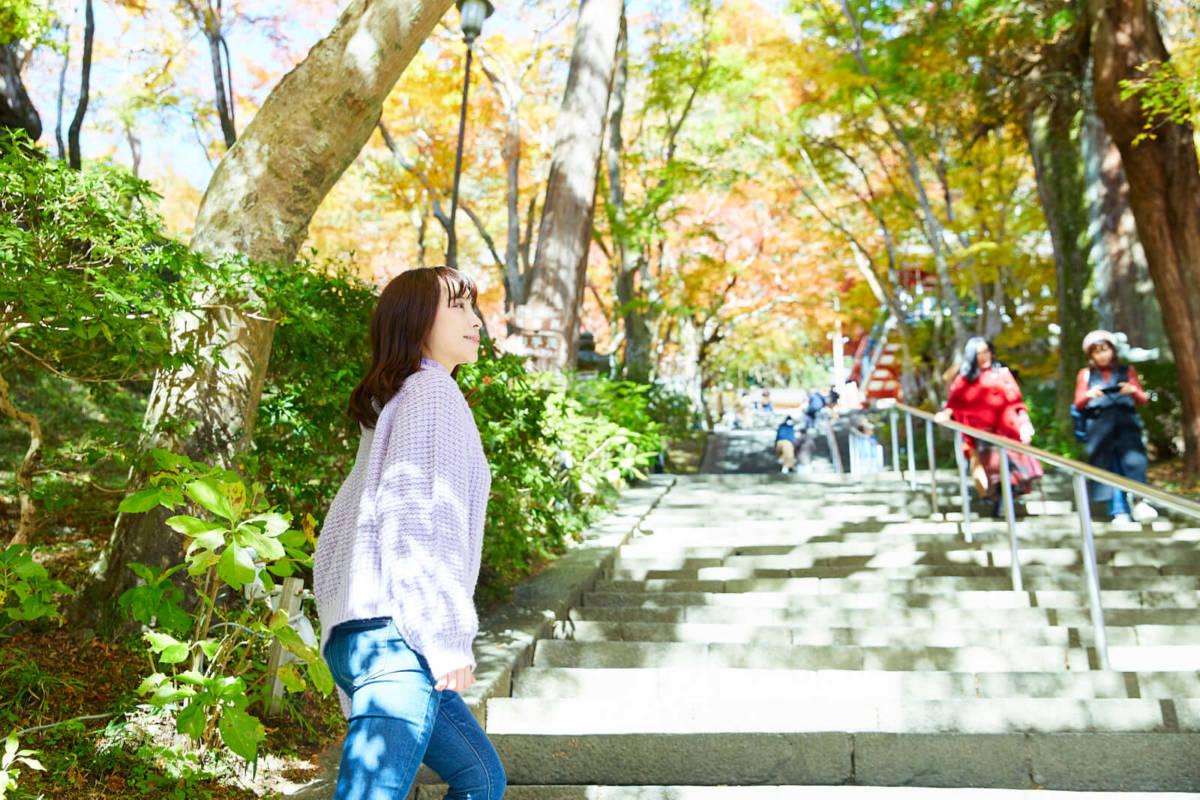 談山神社 紅葉 桜
