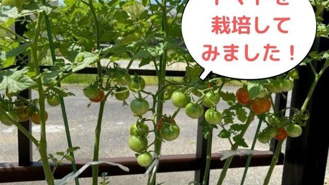 日生ハウジング 桜井市 工務店